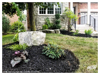 New Garden With Mulch Woodchips