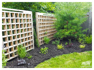 Garden Bed Planting & Re-Design