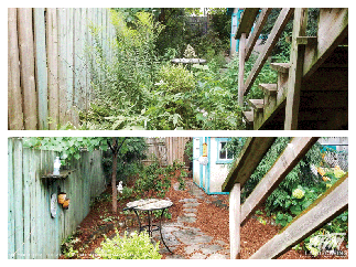 Toronto Home Backyard Clean Up Restoration